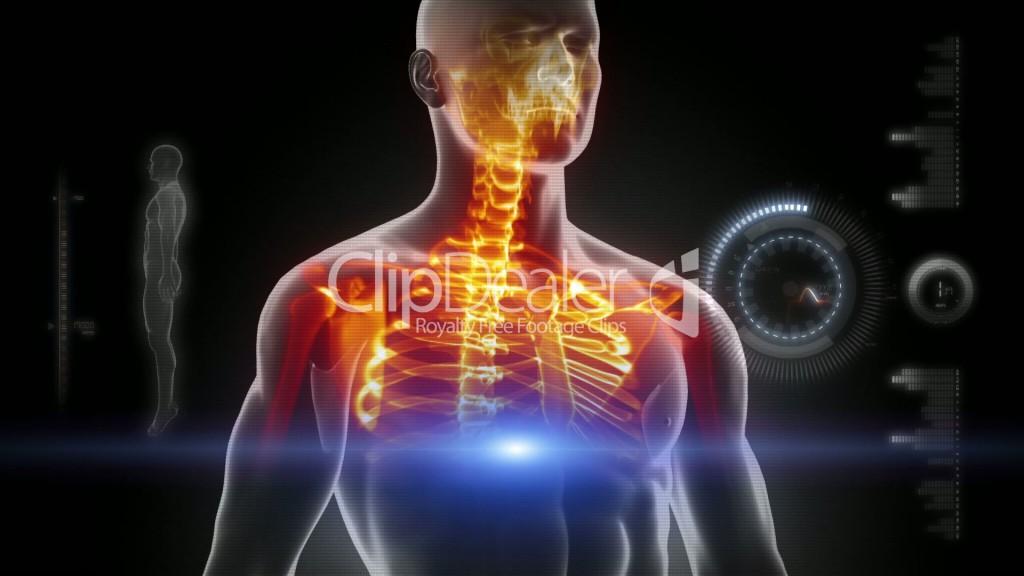 5--838227-Glowing scan of human body in loop